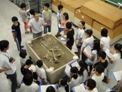 縄文人の骨を見る子供たちの様子