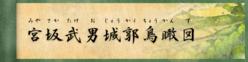 宮坂武男城郭鳥瞰図